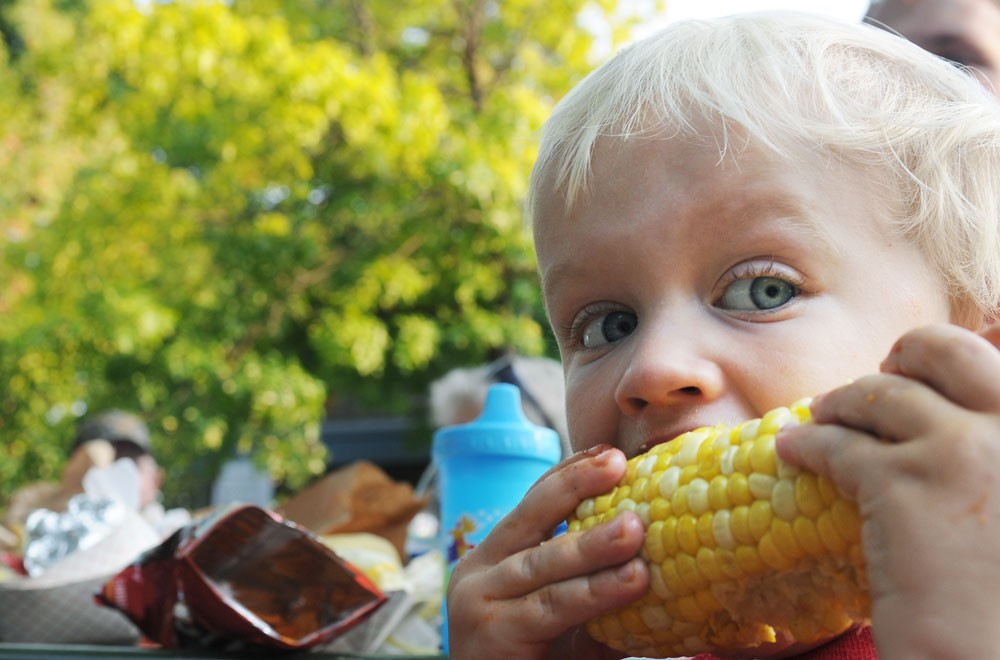 Nathan Palpant, 2, eats corn-on-the-cob at the Como Cookout held Saturday at Van Cleve Park. This year's cookout was held exactly five years after three University students were killed in a Como neighborhood house fire.