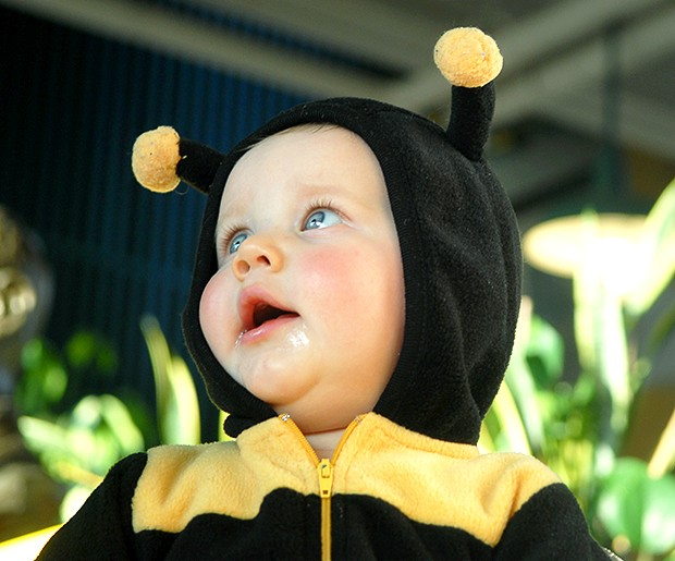 Seven-month-old Luke Malmgren greets attendees at the beekeeping short course Saturday in Borlaug Hall.