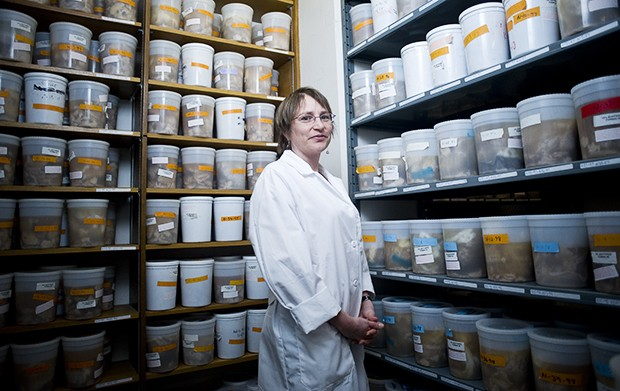 Assistant Professor of Neuropathology Karen Santa Cruz stands in front of more than 600 brains in Diehl Hall.