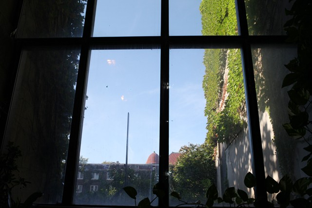 Plants grow Monday along the walls of the Bell Museum of Natural History's arboretum.
