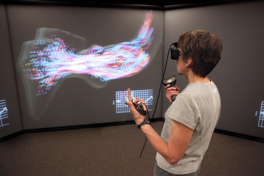 Director of the 3D Lab Nancy Rowe shows a simulation of blood flow through a left ventrical of the heart Friday afternoon in Walter Library. The simulation is intended to help medical professionals create a better valve for use in heart surgeries.