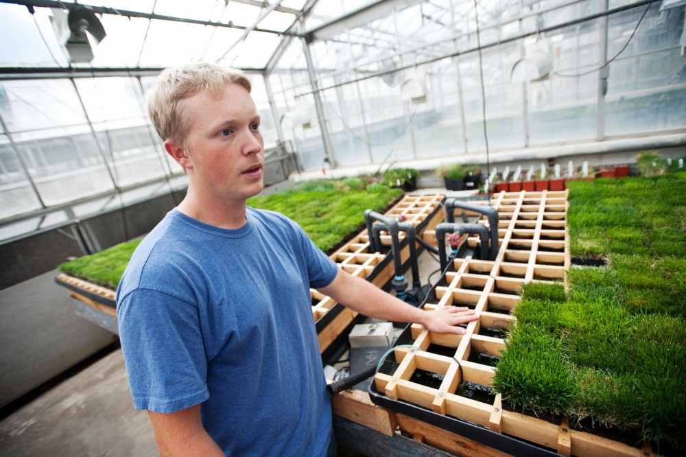 Horticultural Science research assistant Josh Freill talks about the salt tolerance of turf grass at the green house Saturday in St. Paul. University of Minnesota is working with MnDOT to find the most efficient turf mix.