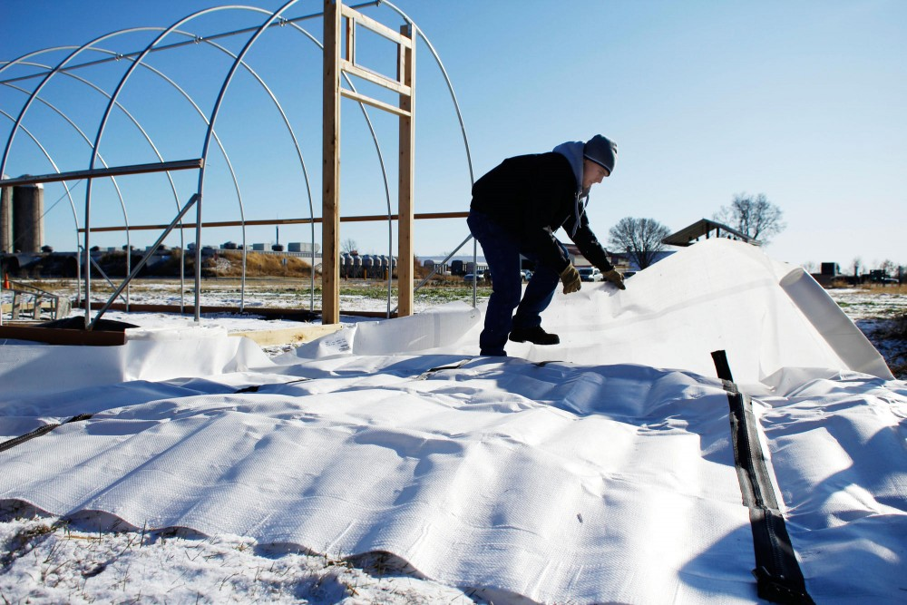 Senior horticulture major Spencer Barriball lays out the tarp Friday on the St. Paul campus. Barriball is constructing a high tunnel that will protect crops for the winter.