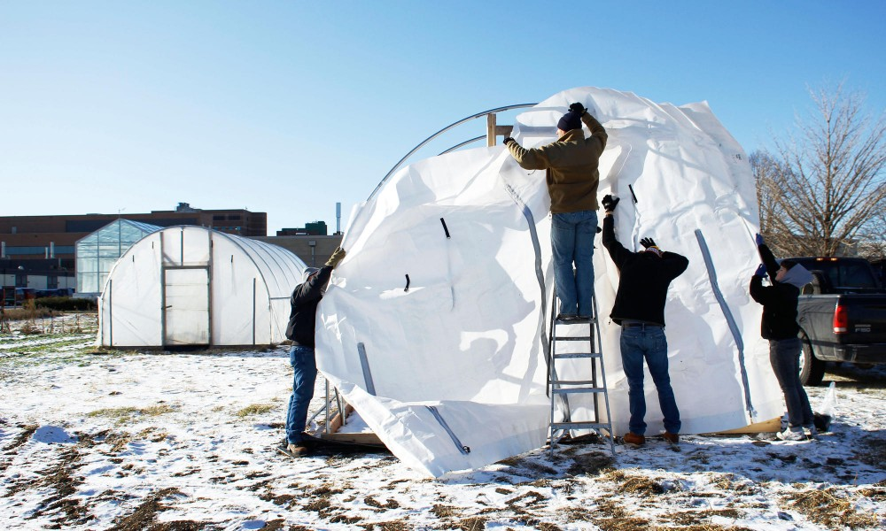 CFANS students work to construct a high tunnel Friday on the St. Paul campus.