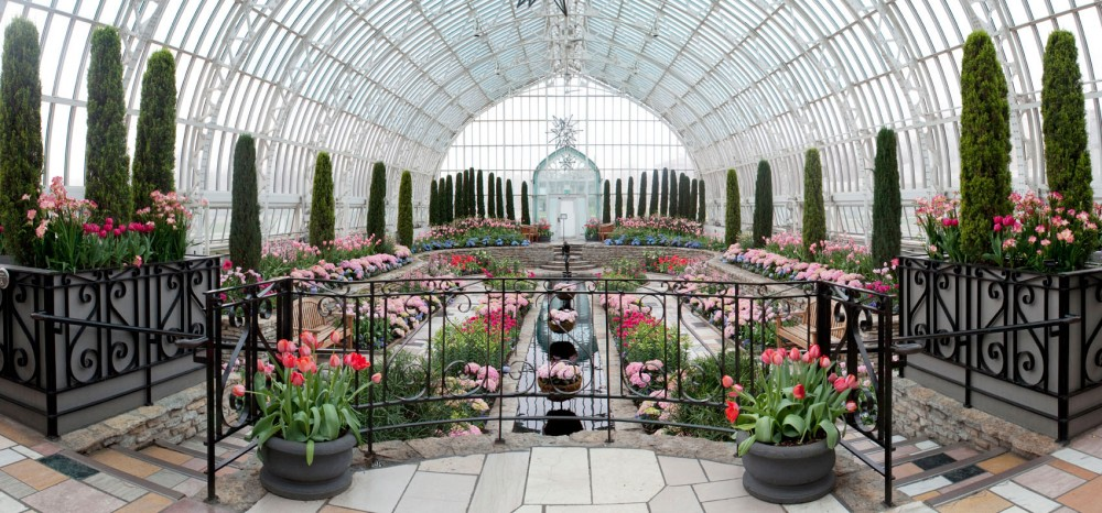 The Sunken Garden at the Como Park Zoo and Conservatory provides a unique, peaceful experience with lively, pastel flowers, entrancing reflective pool, and vast, overarching glass ceiling.