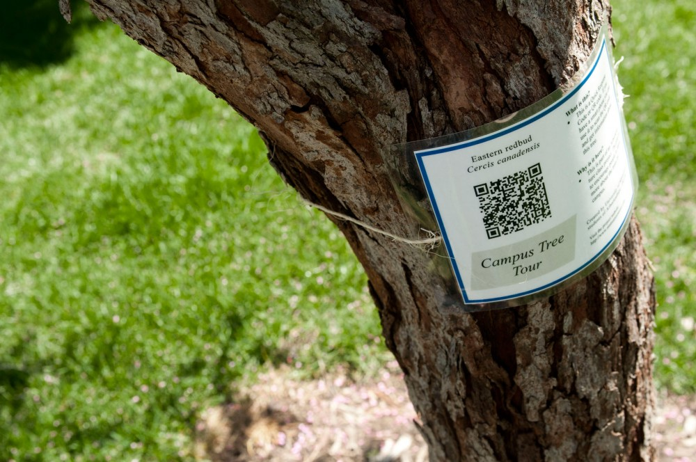 The Eastern redbud is one of thirty-four different species of trees the University of Minnesota arboriculture class has fitted with a QR code in St. Paul, Minn.  The QR codes share interactive information about each tree when scanned by a smart phone.