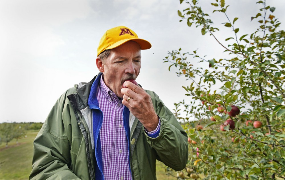University Apple Breeding and Cultivar Development Research Scientist David Bedford samples a fruit Friday at the Horticultural Research Center in Excelsior, Minn.