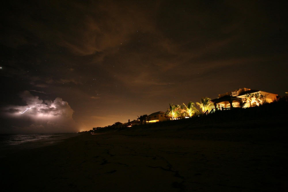 In The City Dark, biologists along the Florida coast study the effects of Miamis light pollution on sea turtles.