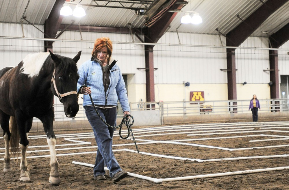 Kim Oglesby, from Hudson, Wisc., leads the horse Elderberry through the labyrinth constructed on Saturday, May 4, 2013, at the Leatherdale Equine Center. The