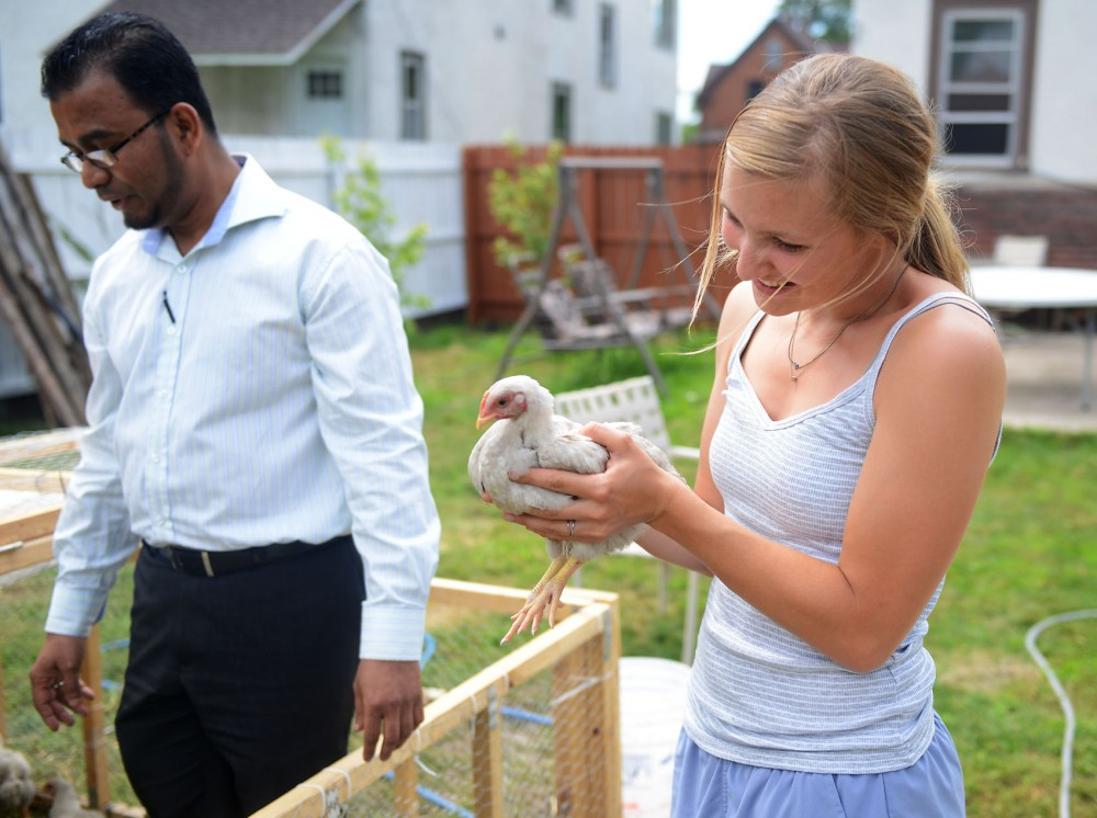 Farm to restaurant coordinator Corrie Weikle is passed a chicken from Gandhi Mahal, owner Ruhel Islam, at one of the plots in the Longfellow neighborhood of south Minneapolis, Thursday afternoon.