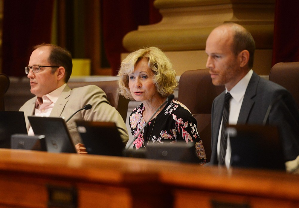 Minneapolis City Council Member Diane Hofstede speaks in favor of a Dinkytown development moratorium Friday morning at Minneapolis City Hall. The moratorium would block Kelly Doran's proposed six-story, mixed-use apartment complex in the heart of Dinkytown.