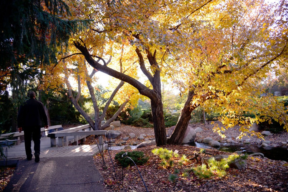 Established in 1958 by the College of Food, Agricultural and Natural Resource Sciences, the Landscape Arboretum is the largest public garden in the Upper Midwest. It displays gardens, woods, prairies and plant collections.