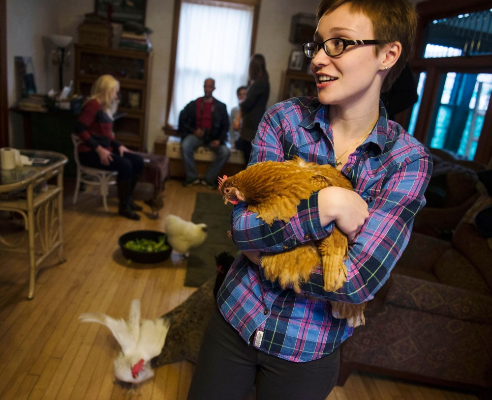 University student Mose Kusik holds a chicken at Chicken Run Rescue on Sunday afternoon.