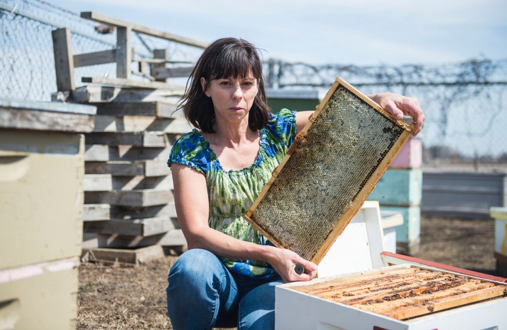 Bee Squad Coordinator Becky Masterman shows a frame from a hive that is used to keep bees and collect honey that bees make, in St. Paul on Wednesday afternoon. The Bee Lab on the St. Paul campus conducts important research about bees and does community outreach to improve the bee population and food security.