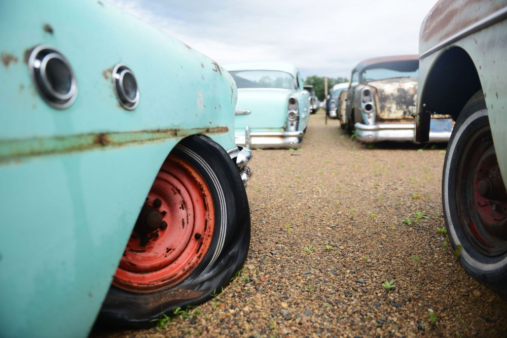 Old Chevrolets sit in the 100-acre yard of French Lake Auto Parts in Annandale on Friday. French Lake Auto Parts has thousands of cars dating back to the 1920s.
