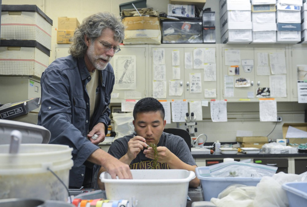 Tenured professor Ray Newman examines a lake plant with biology, society and environment senior Kao Vang at Hodson Hall in St. Paul on Thursday morning.