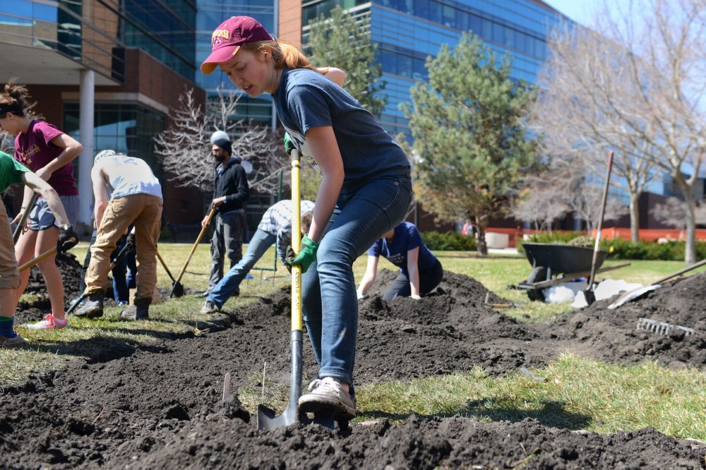 Sophomore Kristen Anderson digs up turf on West Bank on Saturday afternoon. University students started a fairshare community garden to help learn about gardening and sustainability with the Cedar Riverside Community.
