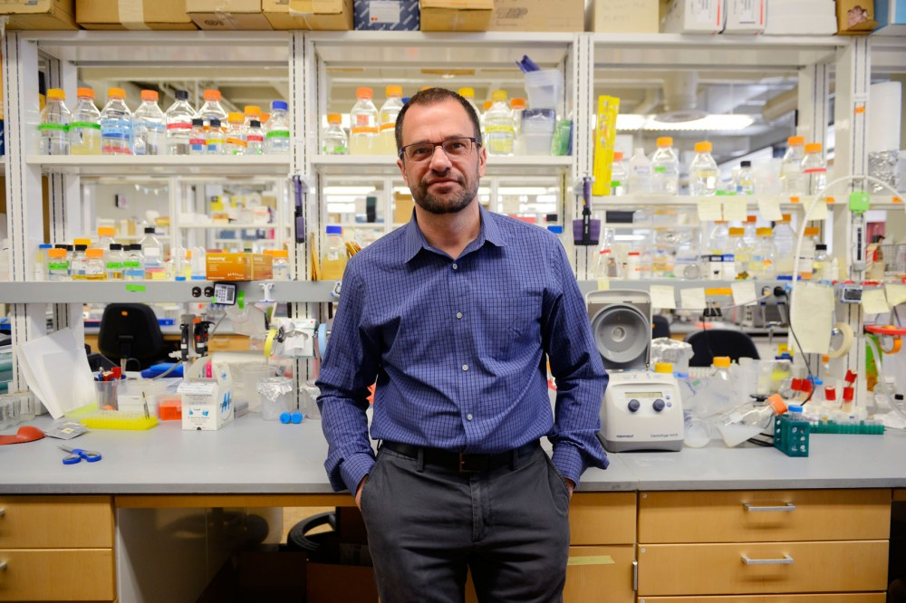 University professor Daniel Voytas developed a method of editing plant genes using a technology that is currently at the center of a patent dispute.