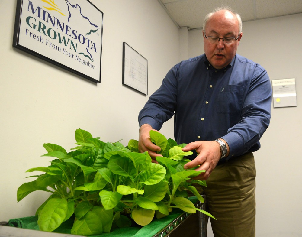 MN Pharm co-founder Dave Roeser explains the process of using a tobacco plant to organically grow medicine.