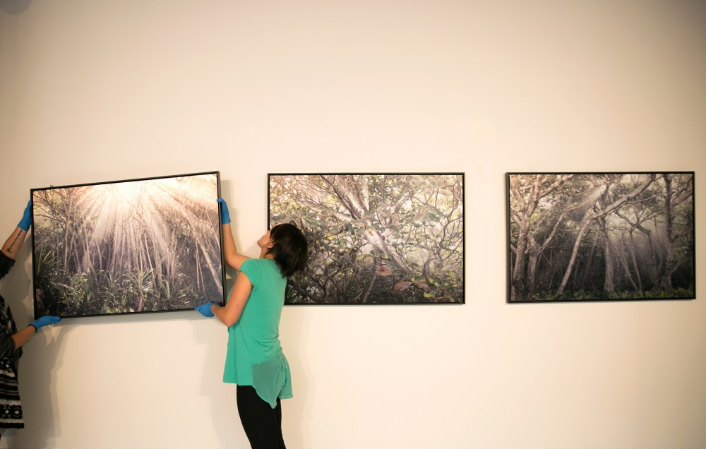 Curatorial Assistant Térez Iacovino hangs the final piece in the Quarter Gallery in the Regis Center for Art. This gallery showcases work from photographer Ann Ginsburg Hofkin and will open to the public on September 15.