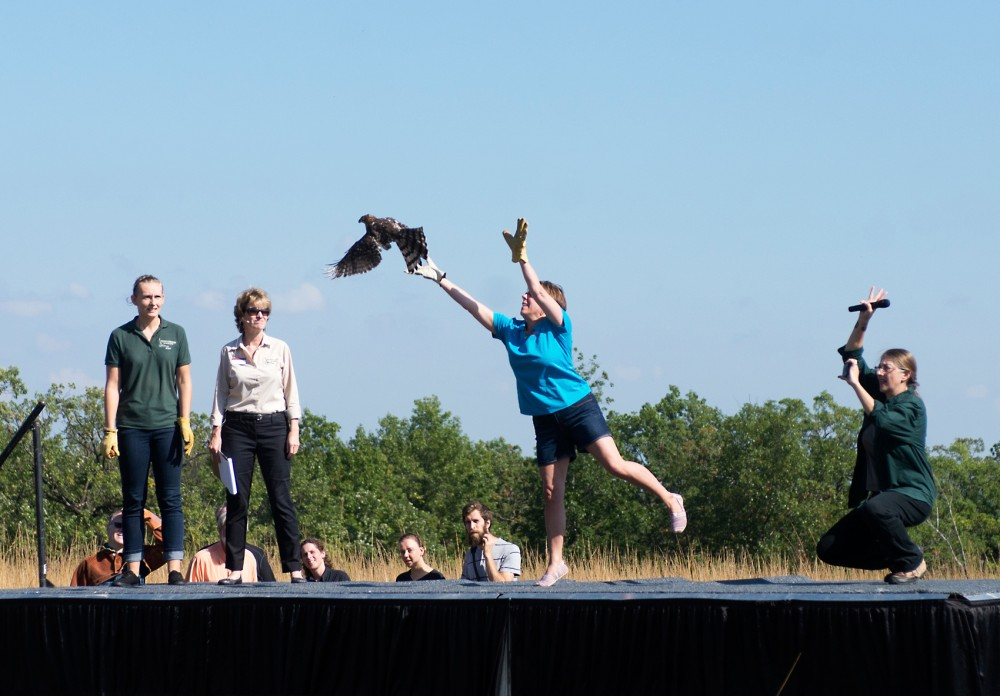 A raptor is released on stage, Saturday at the Carpenter Nature Center in Hastings, MN.