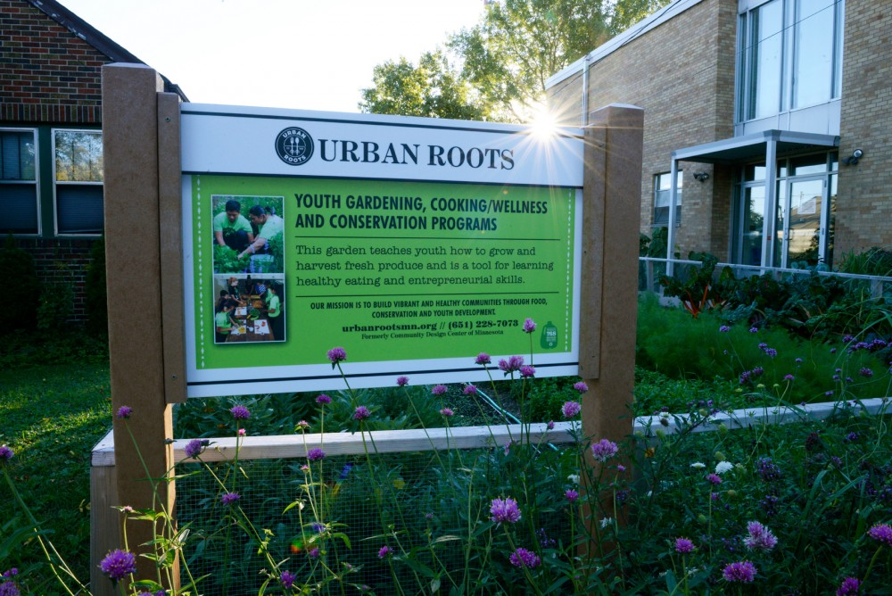 An urban garden plot planted by local youth sits outside the Urban Roots headquarters in St. Paul on Tuesday evening.