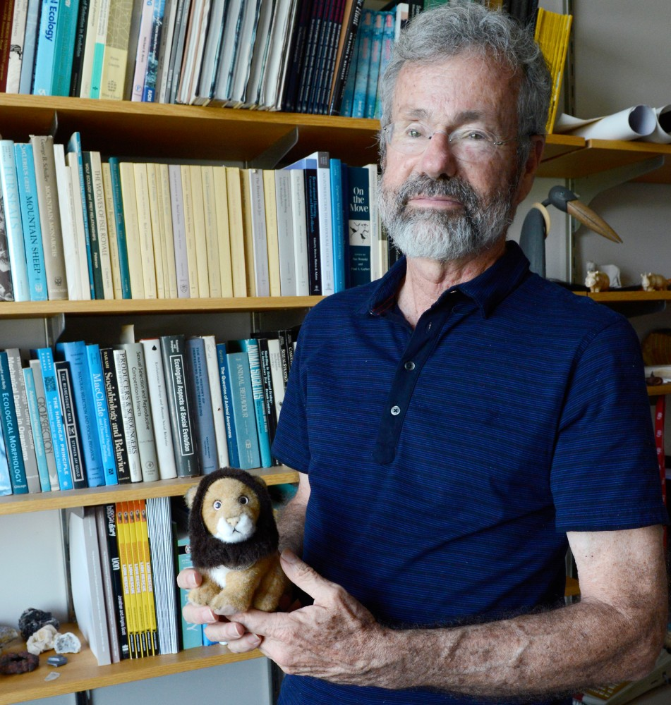 Professor and Director of the Lion Research Center, Craig Packer poses in his office in the ecology building on Friday afternoon.