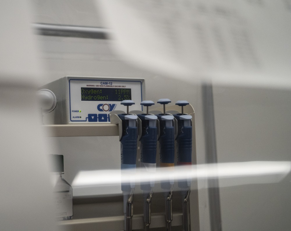 Hydrogen and oxygen levels are seen in an anaerobic chamber that researchers call the,