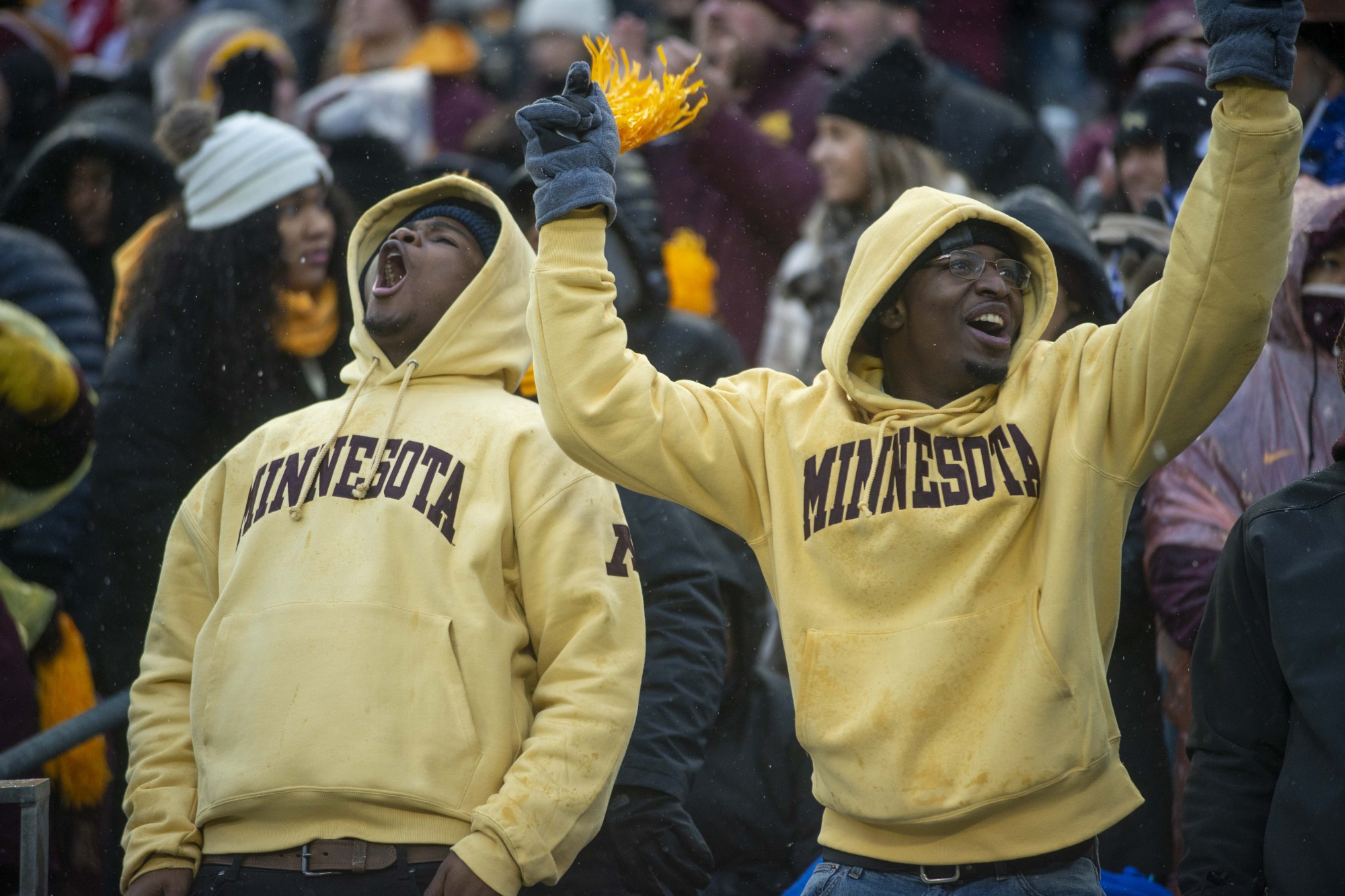 Gopher fans cheer during the game against the Badgers at TCF Bank Stadium on Saturday, Nov. 30.