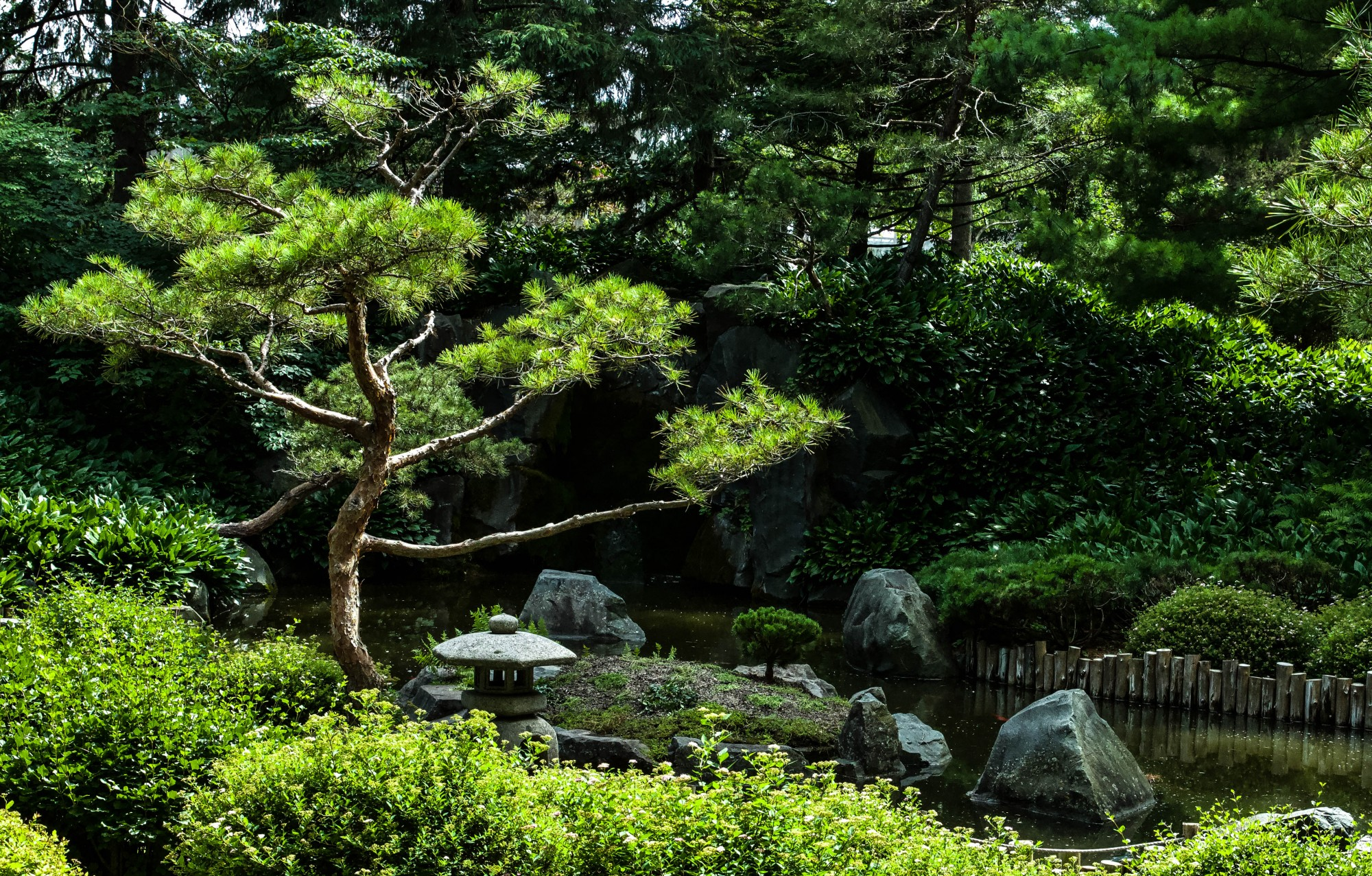 The Japanese Garden is tucked away to the West of the Oswald Visitor Center at the Minnesota Landscape Arboretum in Chaska on Monday, July 13.