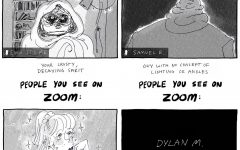 Editorial Cartoon: People you see on Zoom