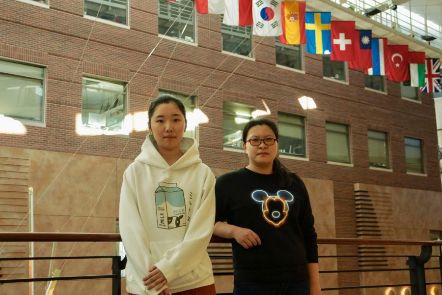 International Student Advisory Board members Yining Wang and Peng Ge pose in front of a row of world flags at the Carlson School of Management on Wednesday, Feb. 26. Wang is a master