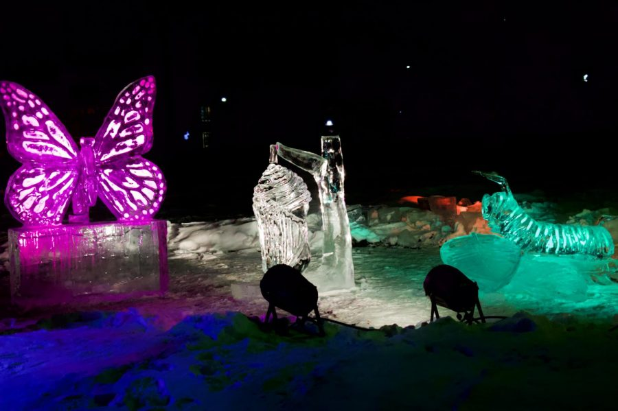 Ice sculptures displayed in St. Paul's Annual Winter Carnival on Thursday, Jan. 28. This year marks the 135th Anniversary of the first carnival.