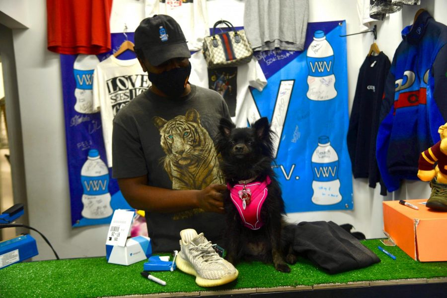 Co-owner Kelvin Kuria pets Suki, the store pup, at Water Wave TV on Friday, April 2. In addition to the vintage shop that opened last November, Water Wave TV also has a podcast and recording studio.